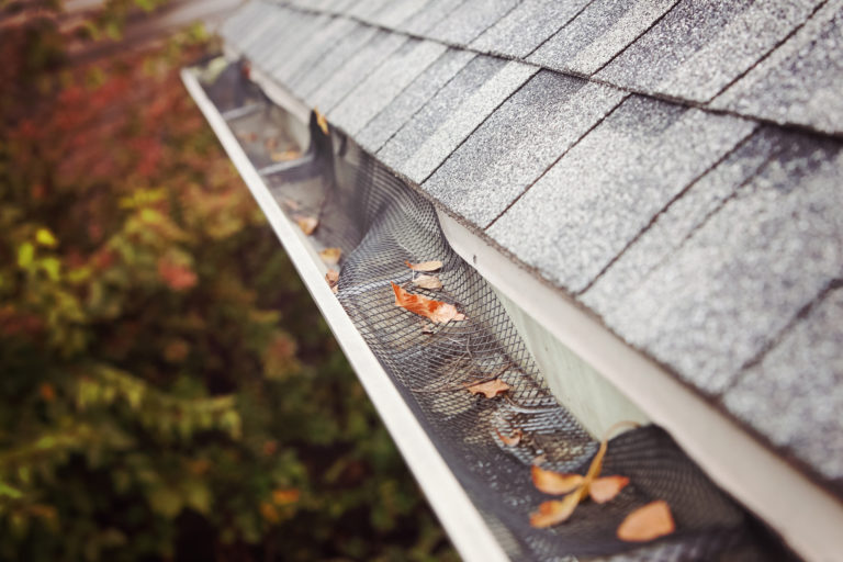 Plastic guard over gutter failure on a roof with leaves stuck in the mesh